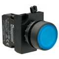 Mygtukas CP100DM